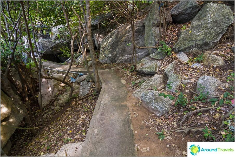 Toinen polku viidakon läpi