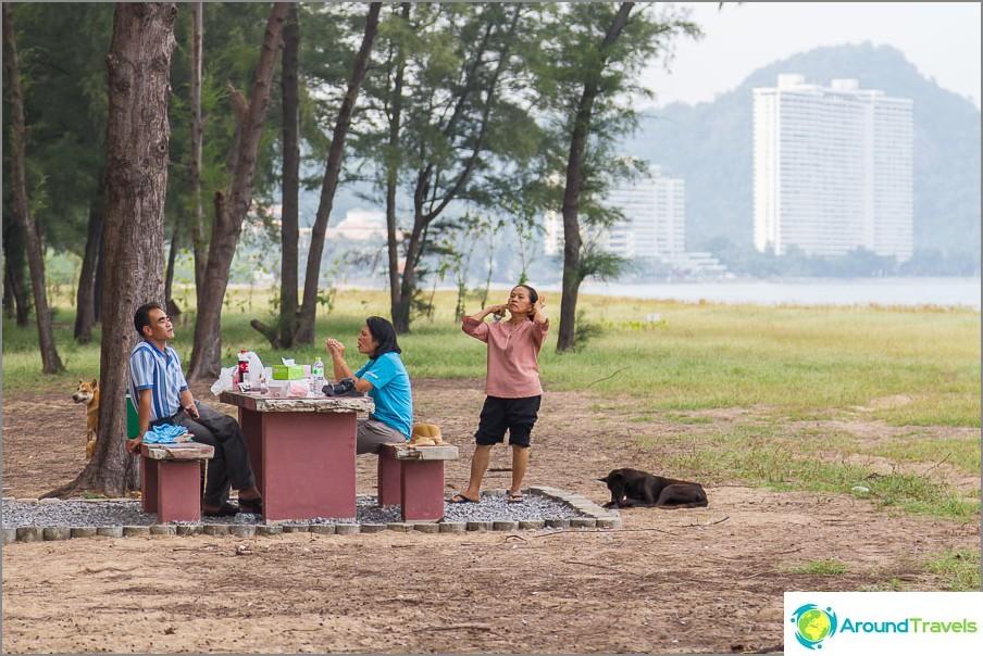 Upea paikka piknikille