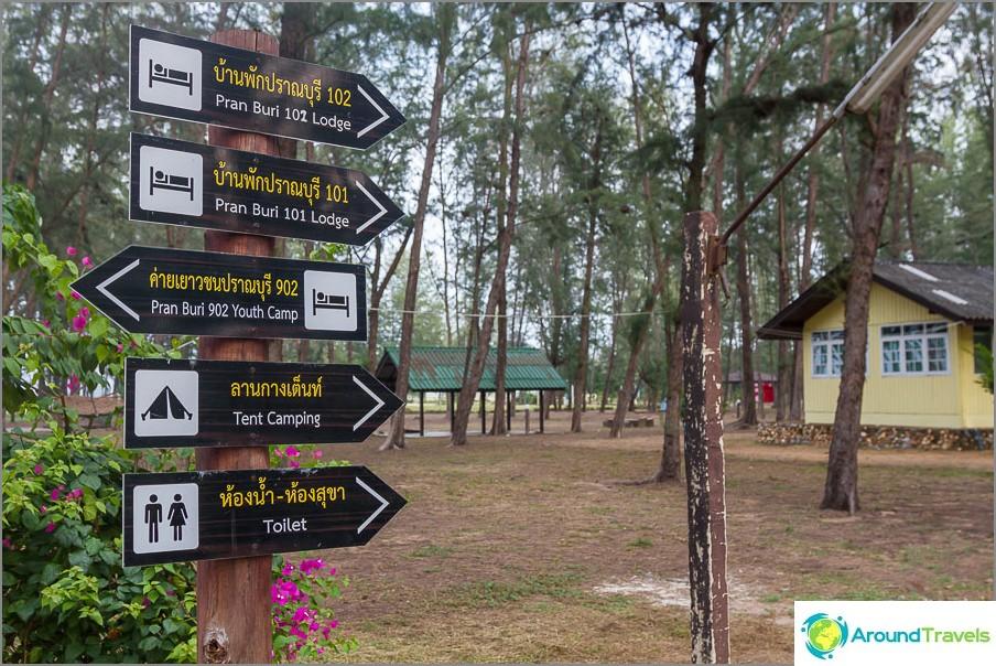 Viitat Pranaburin metsäpuistossa