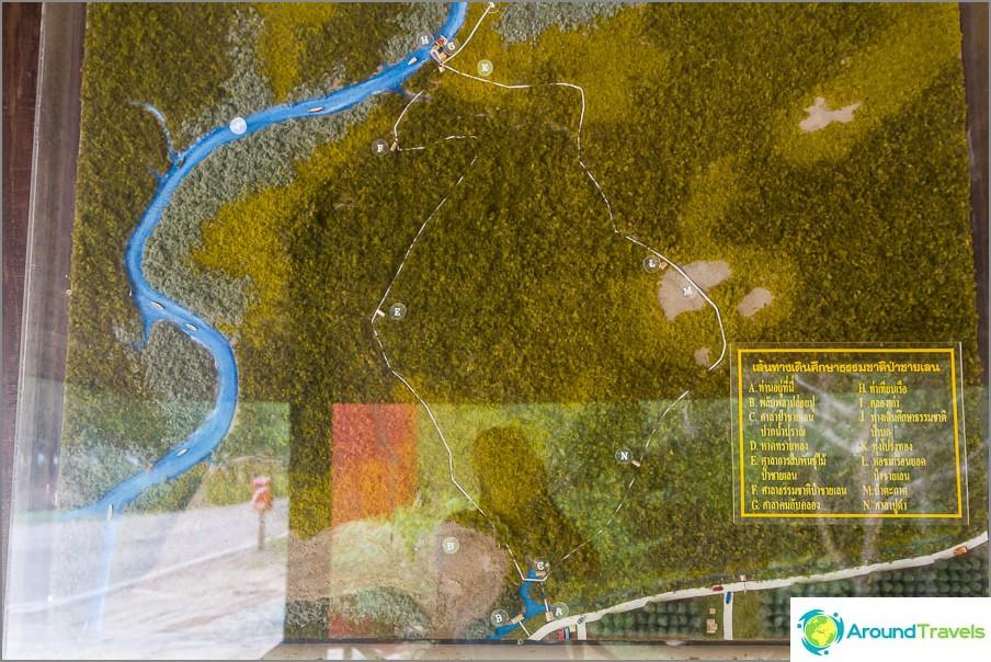 Mangroven kartta