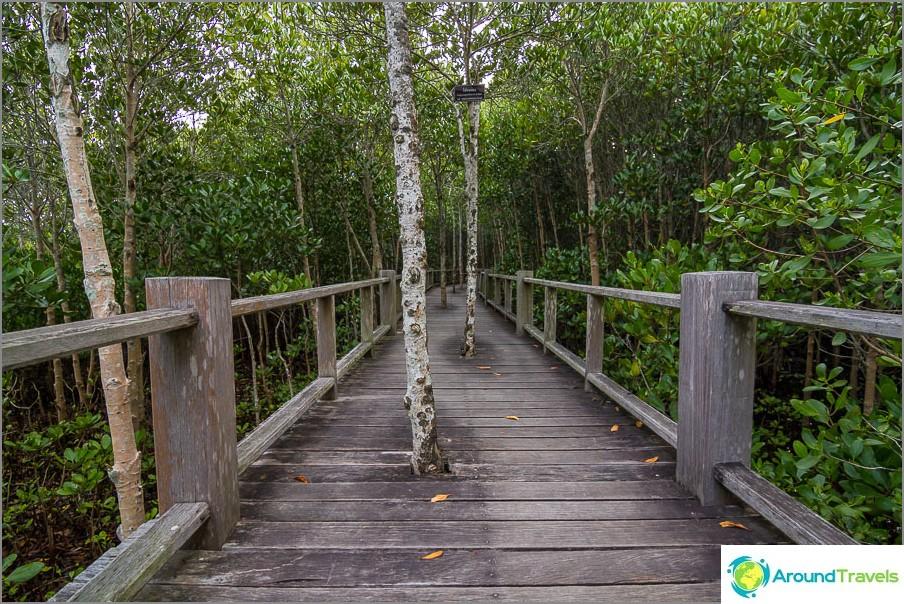 Lavat on kirjoitettu maksimaalisesti Pranaburi-puiston maisemaan