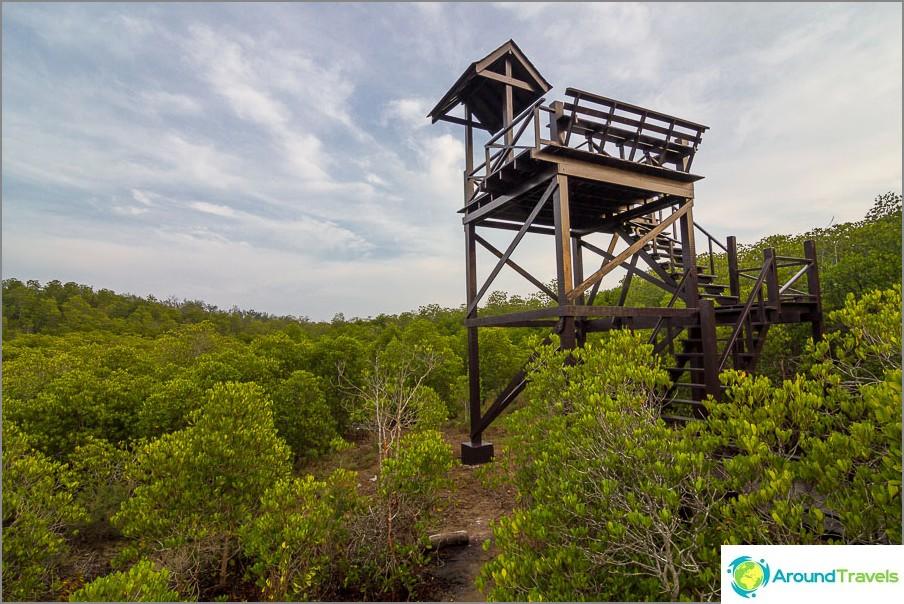 Tarkkailutaso Pranaburin metsäpuistossa