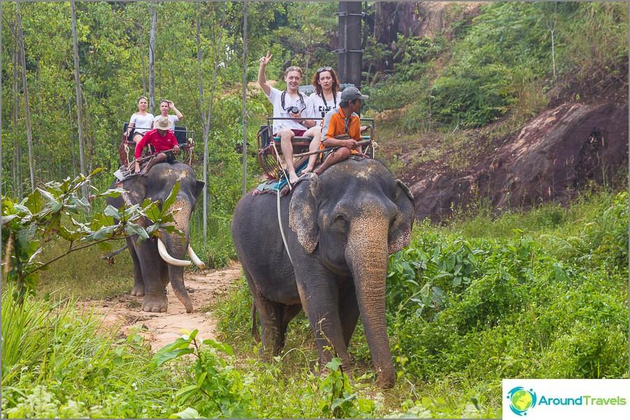 Слон вози близо до водопад Клонг Плу