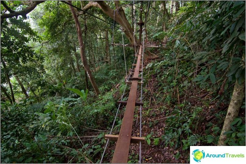 Въжени мостове в Ture Top Adventure Park