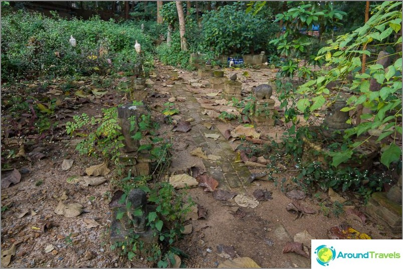 Tunnelitemppeli Wat Umong (8)