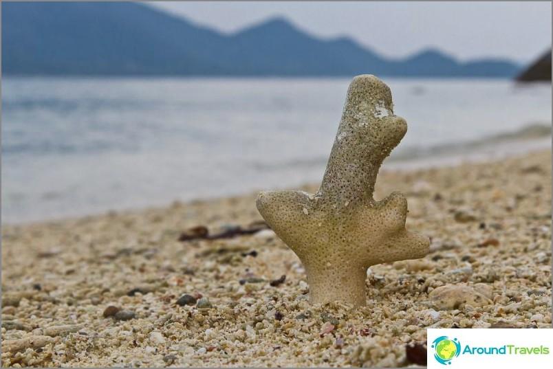 Kuvia kohteesta Koh Changin saari (40)