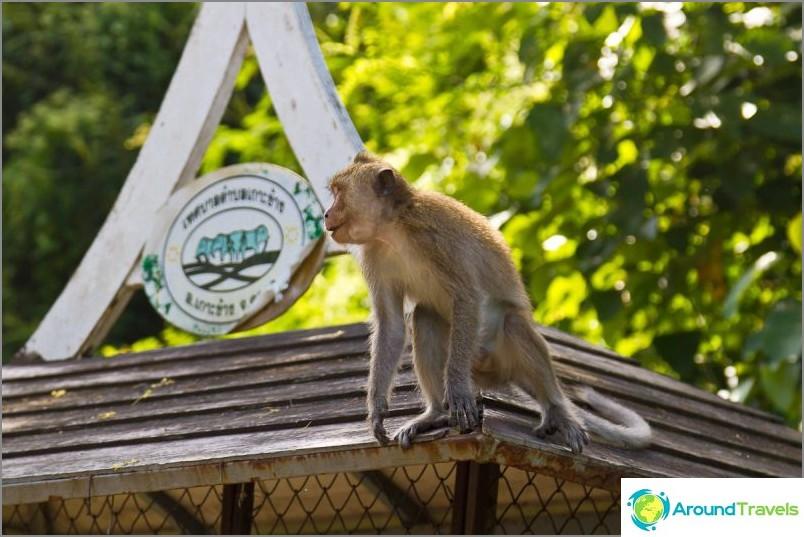 Kuvia Koh Changin saarista (18)