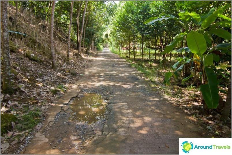Polku Tan Miomin vesiputoukseen