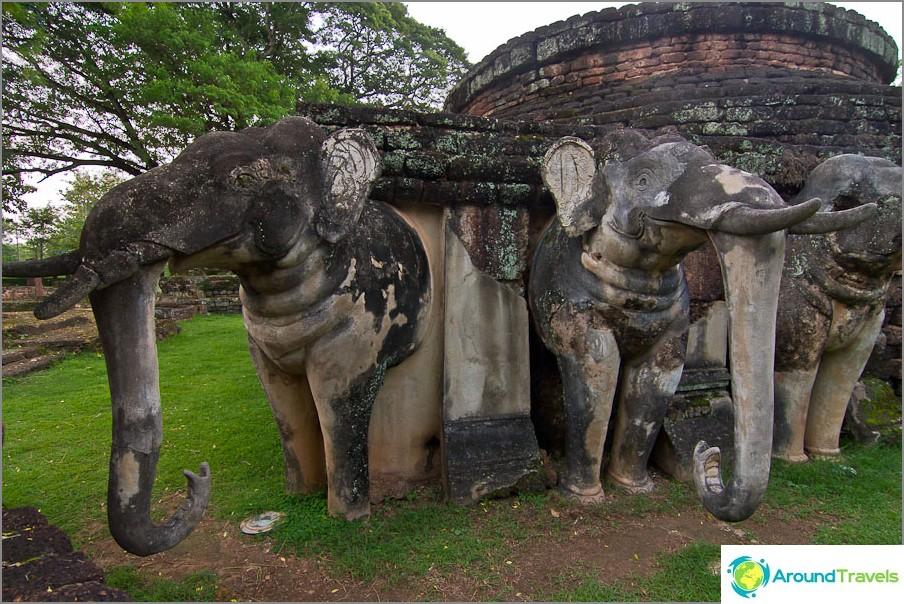 Elefantit kiinnitetyt tavaratilat takaisin