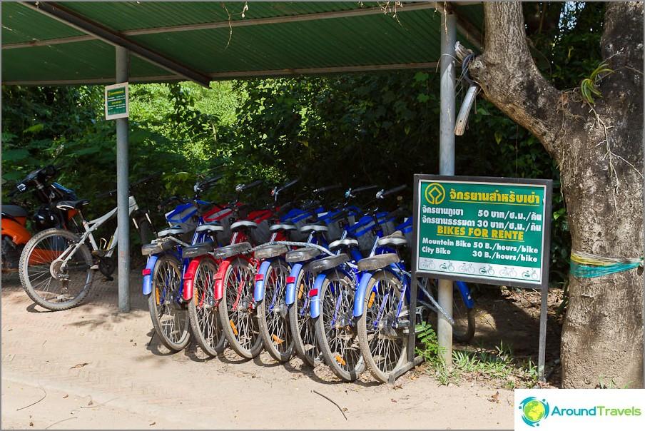 Polkupyörän vuokraus Campeng Petin historiallisessa puistossa