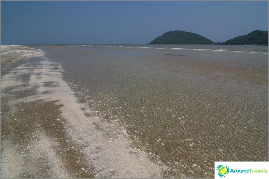 Laskuvesi rannalla