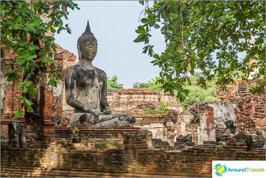 Buddha romahduksen ja puiden joukossa