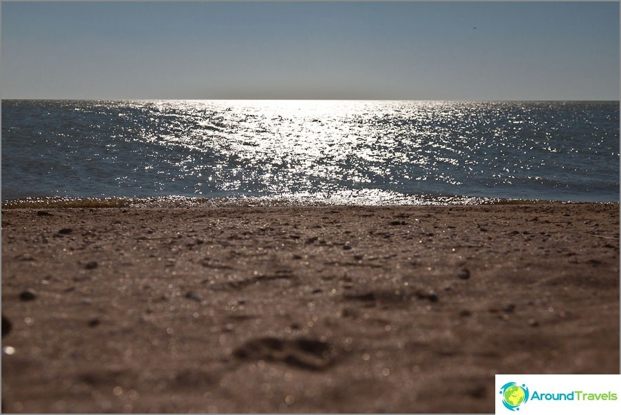 Pitkä sylkeinen ranta