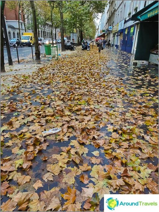 Pariisin kadut ovat täynnä lehtiä