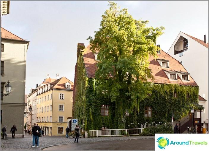 Зелен оазис в центъра на Мюнхен