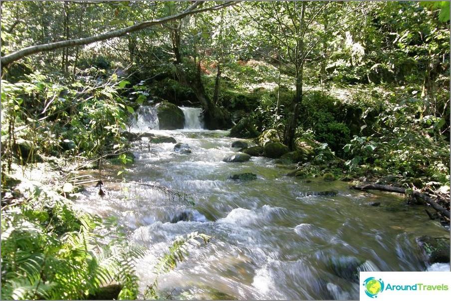 On parempi ottaa päivä käydä Mtirala Park.