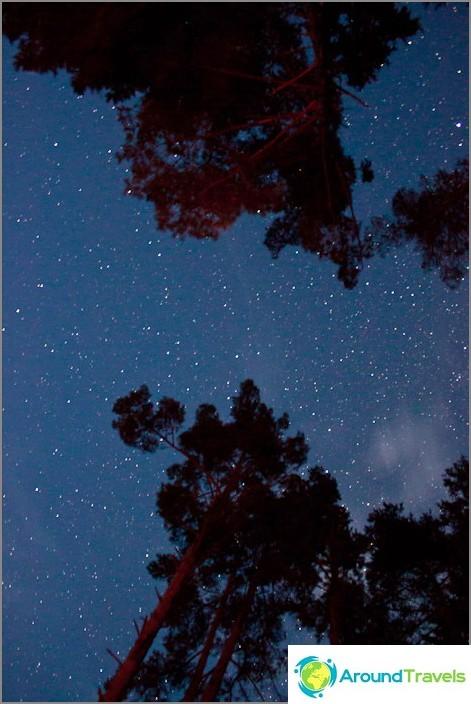 Tähtitaivas elokuussa.